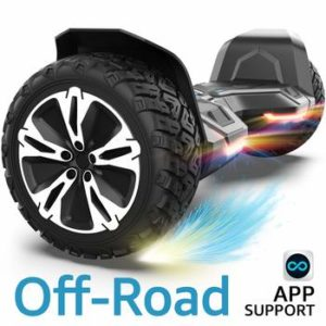 Top 10 Best Off-Road Hoverboards in 2021 Reviews
