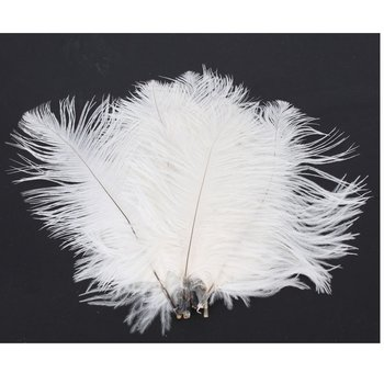 10 50 x White Ostrich Feathers (15-20 CM)