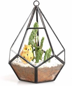 10. NCYP 5.3 inches Hanging Glass Terrarium
