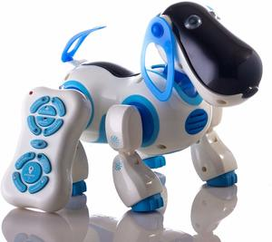 #13 Durherm Smart Storytelling Robot Dog