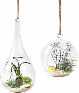 3. Mkono 2 Pack Glass Hanging Planter Air Plant Terrarium