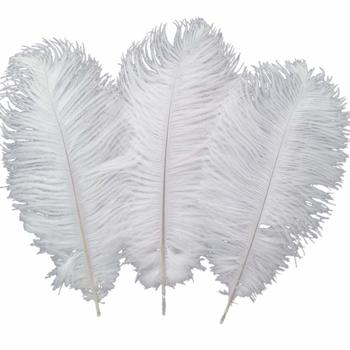 4 Sowder 10pcs Ostrich Feathers 12-14inch(30-35cm) for Home Wedding Decoration(White)