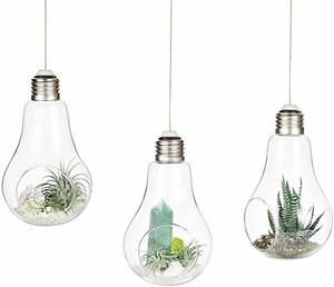 8. Mkono 3 Pack Light Bulb Terrariums