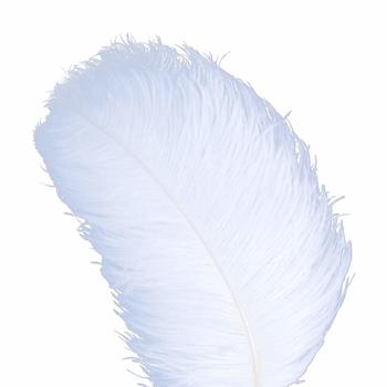 9 AWAYTR 10pcs Natural Ostrich Feathers for Wedding Centerpieces Home Decoration