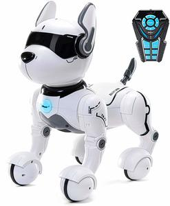 #9 Remote Control Robot Dog Toy