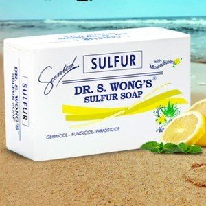 Top 9 Best Sulfur Soaps In 2020 Reviews