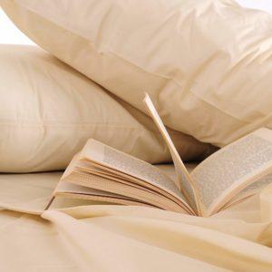 #5. Mezzati Luxury Two Striped Pillow Cases