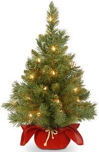 1. National Tree 24 Inch Majestic Fir Christmas Tree