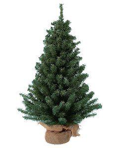 3. Mini Christmas Tree Kurt Adler 12 Miniature Pine Tree