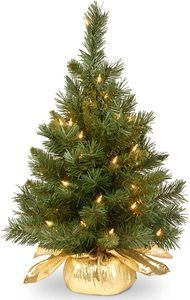 5. National Tree 24 Inch Majestic Fir Tree - Mini Christmas Trees
