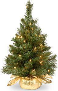 5. National Tree 24 Inch Majestic Fir Tree - Mini Christmas Trees
