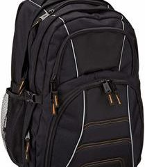 6. Amazon Basics Laptop Computer Backpack