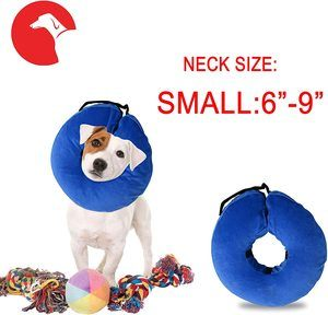 #10 Laboratory 29 Inflatable Dog Collar