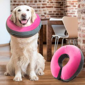 #7 GoodBoy Comfortable Recovery E-Collar