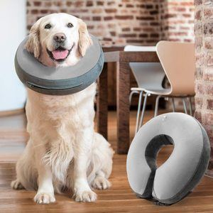 #8 GoodBoy Recovery E-Collar