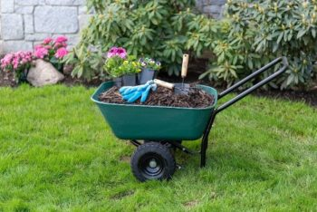 2. Garden Star 70019 Garden Barrow Dual-Wheel Wheelbarrow