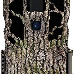 Top 10 Best Stealth Cams in 2021 Reviews