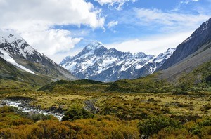 6) NEW ZEALAND